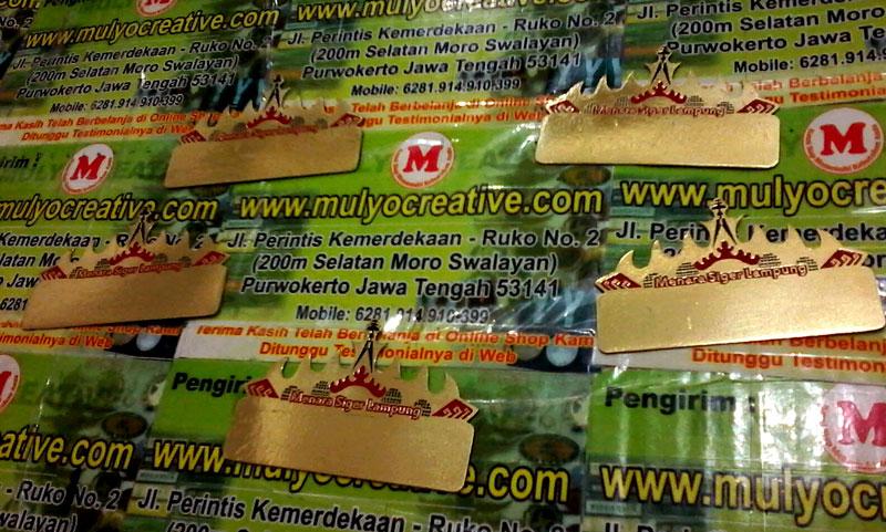 Pin Menara Siger untuk PNS Lampung